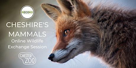 Online Wildlife Exchange Session - Cheshire's Mammals tickets