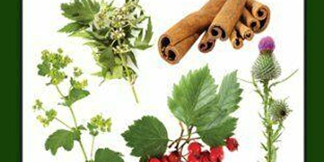 Medicinal Plants in Maine tickets
