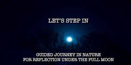 Guided Visualisation Journey for Reflection under the Full Moon tickets