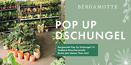 Bergamotte Pop Up Dschungel 2.0 // Frankfurt Tickets