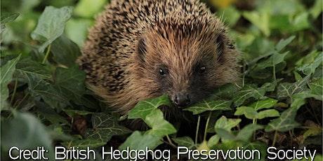 Glasgow University: Helping Hedgehogs Webinar tickets