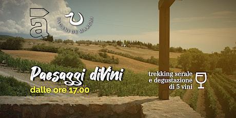 Paesaggi diVini - Trekking serale con degustazione di 5 vini biglietti