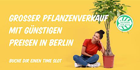 Pflanzenverkauf mit günstigen Preisen - Berlin tickets