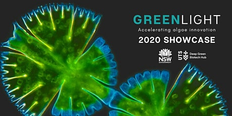 Green Light 2020 Showcase Night tickets