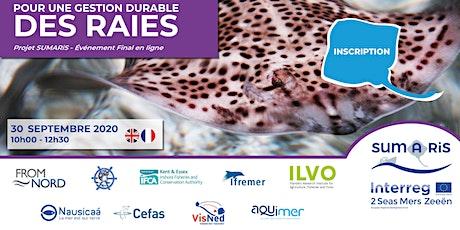 Conférence finale SUMARiS - Pour une gestion durable des raies tickets