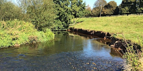 Guided Walk: The River Culm at Killerton tickets