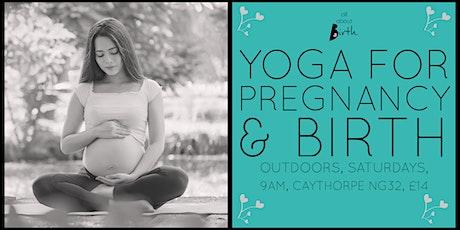 Yoga for Pregnancy & Birth tickets