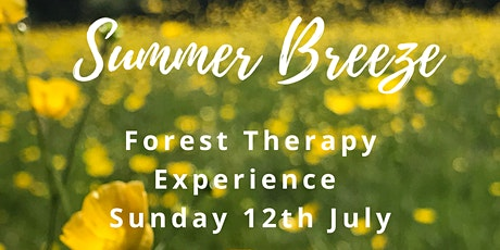 Summer breeze - woodland wellness tickets