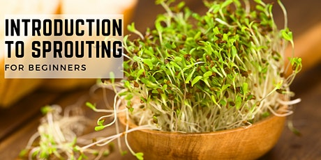 INTRODUCTION TO SPROUTING tickets