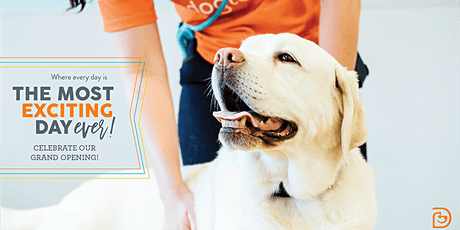 Dogtopia of Arlington Heights - Grand Opening tickets