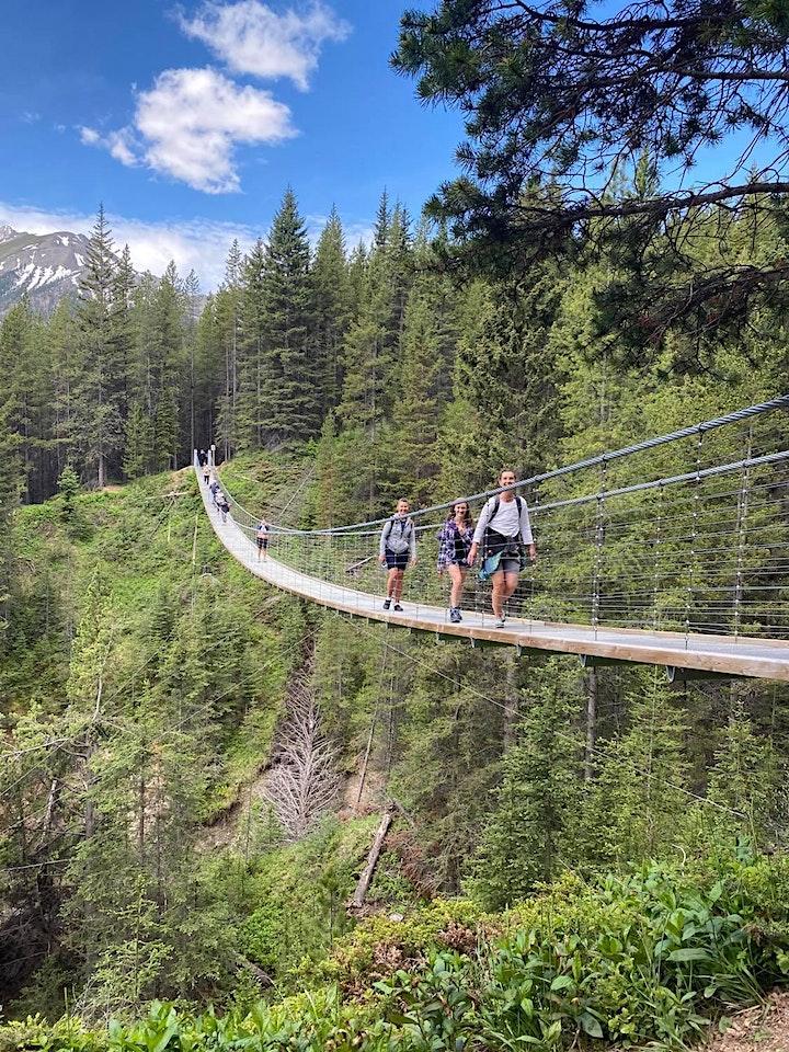 Blackshale suspension bridge and Black Prince  Trail (Warspite Lake) image