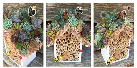 Succulent Bee Hotel tickets