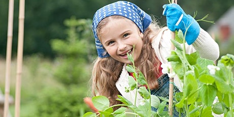 Grow Food and Compost (Ages 6-8) tickets