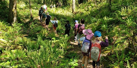 Forest Saplings - Family Nature Workshop - August 11 tickets