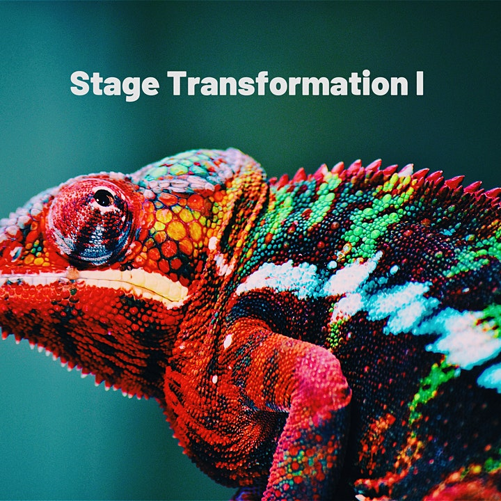 Image pour Stage Transformation I