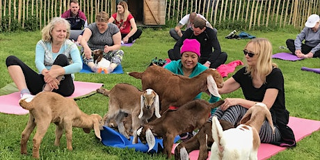 Yoga with Goats tickets