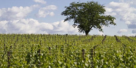 Take me to the vines: Wine tourism 2020 and beyond. tickets