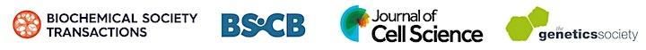 2020 BSCB GenSoc UK Cilia Network e-Symposium 10 image