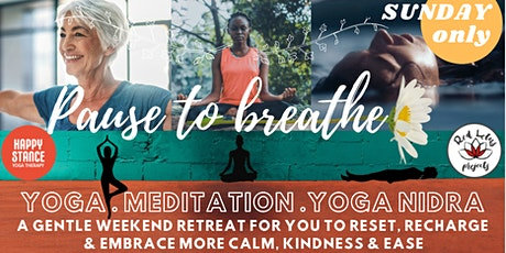 Pause to Breathe : Yoga, meditation, nidra -  1 day option SUNDAY ONLY 2hrs tickets