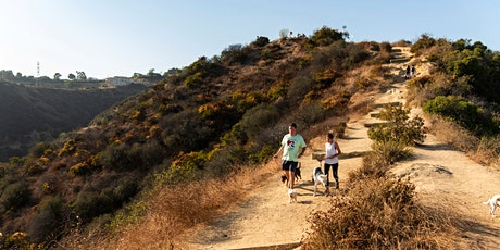Hike Runyon Canyon with a Rescue Dog! tickets