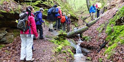 Do,13.08.20 Wanderdate  Singlewandern Naturparadie