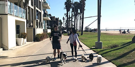 Venice Rescue Dog Walk! tickets