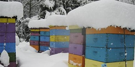 July - ONLINE Beekeeping - Prepping Honeybee Colonies for Winter tickets
