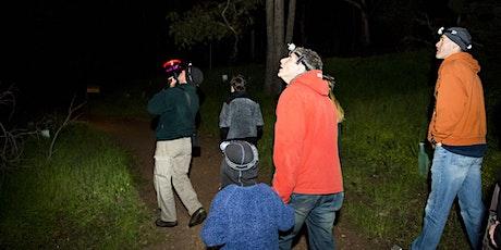 Ranger guided night walks tickets