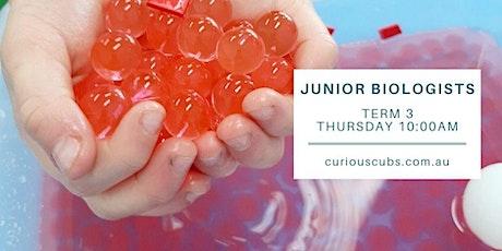 Curious Cubs - 'Junior Biologists' tickets