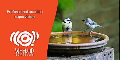 Professional Practice Supervision (SW,NQ,M,SE,CQ)