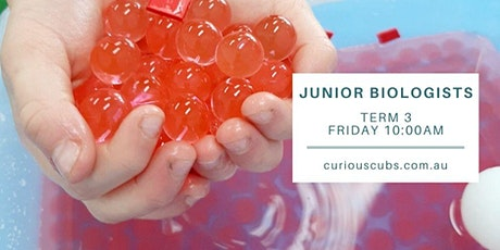 Curious Cubs - 'Junior Biologists' tickets
