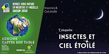 Soirée nature: insectes et ciel étoilé billets