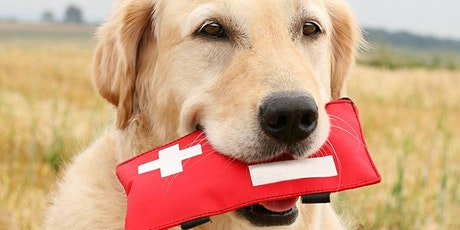 Lezing: EHBO voor hond en kat tickets