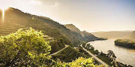 INSTAWALK Wachau: Weingut Domäne Wachau und Steigenberger Hotel & Spa Krems Tickets