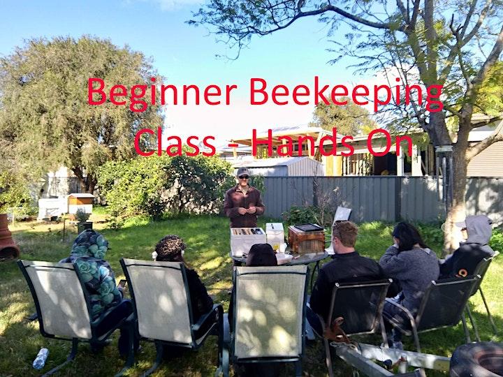 Hands On Beekeeping Workshop Newcastle - 4 Hours. image
