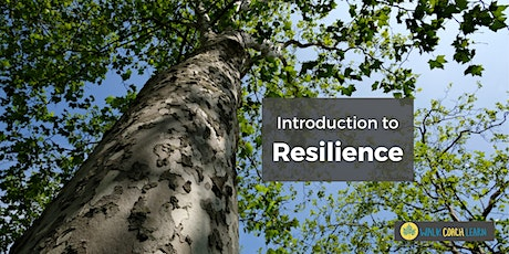 Introduction to Resilience Workshop tickets