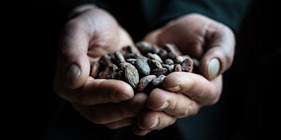 Chocolate Tour & Tasting - Burren B3