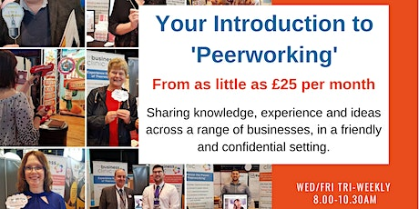 Virtual 'Peerworking' Surgery 18th September tickets