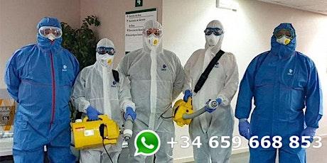 Desinfección de oficinas  y locales del Coronavirus - COVID 19