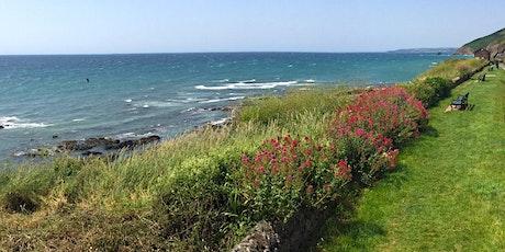 Coastal Foraging Walk, Plymouth tickets