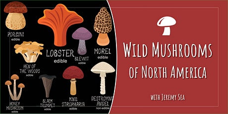 Introduction to Wild Mushrooms of North America tickets
