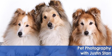 Pet Photography with Justin Starr Zoom Class tickets