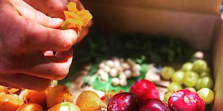 Regenerative Foraging: Wild Foods & Medicines tickets