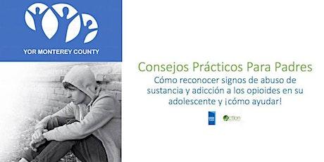 Seminario web para padres sobre el uso juvenil de sustancias. entradas