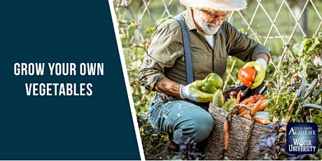 Grow Your Own Vegetables - Fall (Online Event - Register Below) tickets