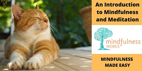 An Introduction to Mindfulness and Meditation 4-week Course — Mudgeeraba tickets