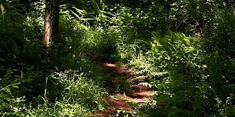 Woodland Explorers Trail (free) tickets