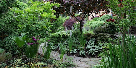 Made for the Shade: Shade Gardening (Online Event - Register Below) tickets