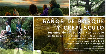 Baño de Bosque viernes 17 Jul - Crepusculo Bosque La Herrería El Escorial entradas