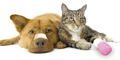 Virtual - Certified Pet Sitter/CPR/First Aid (add on) - 1 hour tickets